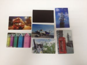 2016 Newest Style Good Image 3D Lenticular Fridge Magnet pictures & photos