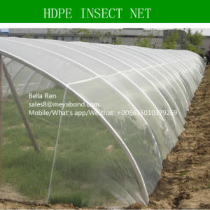 4m Width HDPE Insect Net 50X25mesh pictures & photos