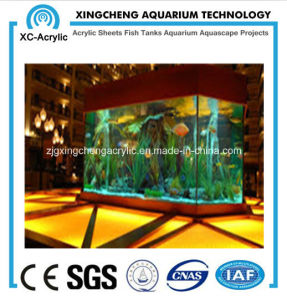 The Magnificent Hall Aquarium pictures & photos