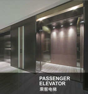 Hairline Stainless Steel Commercial Passenger Elevators pictures & photos