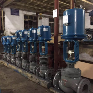 24 in Zrhm Globe Typeelectric Sleeve Control Valve pictures & photos