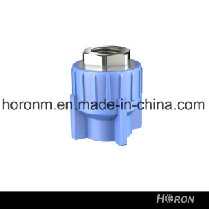 Water Pipe-PPR Fitting-PPR Copper Thread Coupling-Blue PPR Famale Thread Coupling-Thread Coupling-Famale Coupling pictures & photos