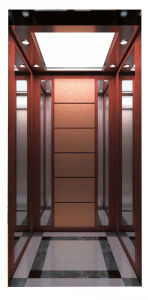 Good Looking of Home Elevator Lift pictures & photos