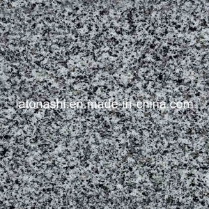 Natural Polished G614 Granite Tile for Floor, Paving, Decorative pictures & photos