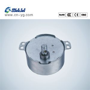 Tyd49-500-1 Permanent Magnet Synchronous Micro Gear Motor