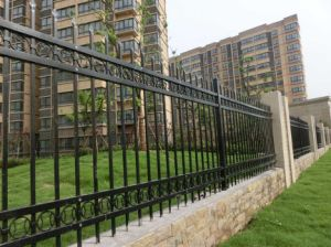 Steel Construction Wrought Iron Fencing pictures & photos