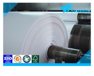80-125GSM Coated Art Paper for Caleader Printing