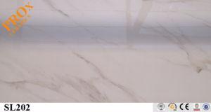 Slim / Thin Panel Porcelain Tile/ Wall and Floor Tile for Home (SL202)