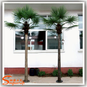 China Supply Artificial Light Plastic Palm Tree pictures & photos