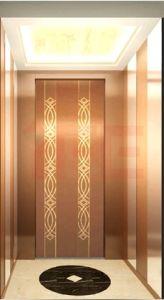 Home Lift (IFE-05)