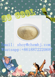 High Purity 99% Steroids Powder Jinyang Base with Factory Sales pictures & photos