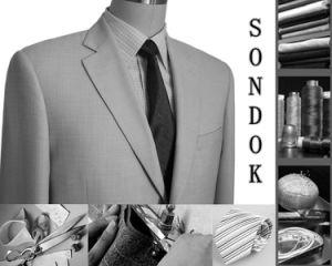 Men′s Wool Leisure Suit (PL005)