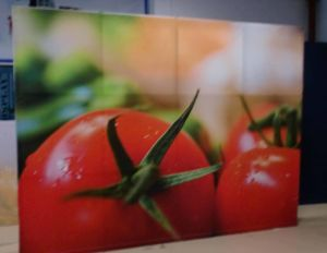 Heat Transfer Advertising Fabric Printing Banner pictures & photos