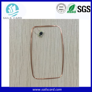 Quality Various Size Copper RFID Antenna Coil with Chip for Smart Card pictures & photos