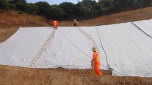 Polyester Continuous Filament Non Woven Geotextile pictures & photos