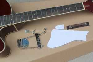 Hanhai Semi-Hollow L5 Red Electric Guitar Kit (DIY Guitar) pictures & photos
