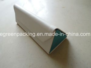 Custom Color/Logo Triangle Spectacle Case (KS1) pictures & photos