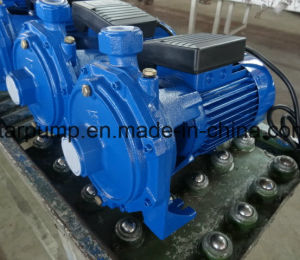 Double Impeller Centrifugual Water Pump pictures & photos
