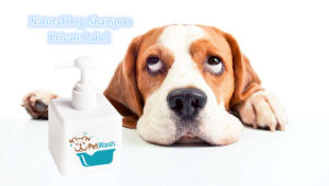Long Coat Dog and Cat Shampoo for Removing Ordour and Soothing Dry Skin pictures & photos