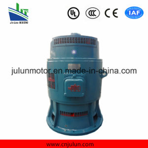 Vertical Low Voltage Motor 3-Phase Asynchronous Motors AC Motor Induction Electrical Motor Special for Axial Flow Pump Jsl12-10-95kw pictures & photos