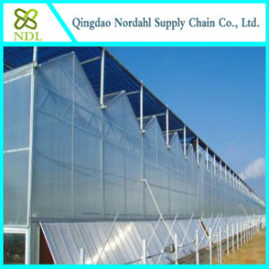 Cheap Farm Equipment Glass Greenhouse, Garden Greenhouse pictures & photos
