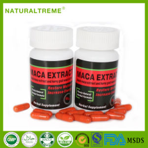 Free Shipping Man Energy Maca Extract Capsule with Low Price pictures & photos