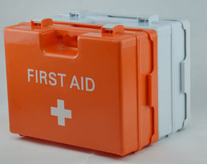 China Manufacturer Popular Waterproof First Aid Kit First Aid Case pictures & photos