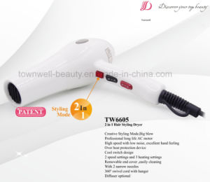 Big Blow 2 in 1 Hair Styling Tools Hair Dryer with AC Motor pictures & photos