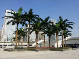 Hotel Decor Artificial Palm Tree Artificial Coconut Palm Outdoor Use pictures & photos