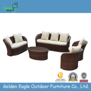 Modern Outdoor Furniture Leisure Sofa Set (TY0008)