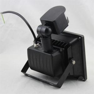 20W 30W 50W 50W 100W LED Flood Light Motion Sensor PIR Sensor LED Flood Light Outdoor Light/Flood Lighting pictures & photos