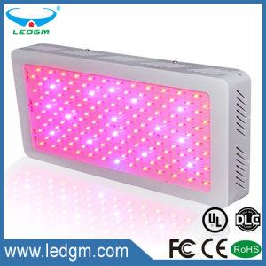 Hydroponics Red Blue Purple Color Square Shape 220-230W LED Grow Light pictures & photos