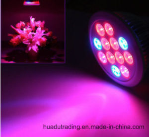 Energy-Saving High Quality LED Plant Grow Light for Hydroponics pictures & photos