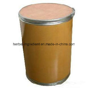 Birch Leaf Extract Flavonoides 5%-10% for Foods Supplement pictures & photos