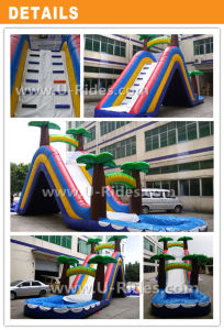 Arched Inflatable Water Slide with Pool pictures & photos