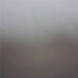 Apparel Accessories Woven Wrap Knitting Fuse Garment Fabric Interlining pictures & photos
