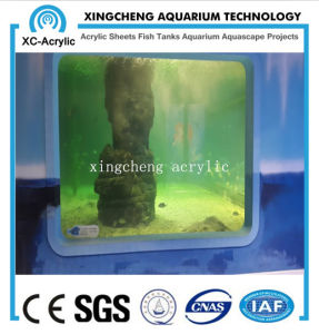 Customized Large Transparent Acrylic Fish Jar Project Price pictures & photos