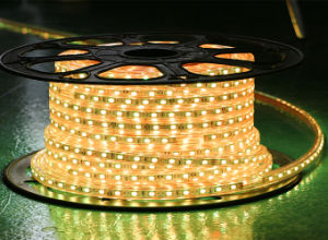 Red Color 60LEDs SMD5630 220V IP65 LED Rope Light pictures & photos