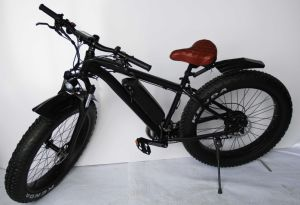 Hot New China Folding E-Bicycle with 4.0 Fat Tire pictures & photos