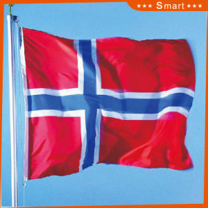 Custom Waterproof and Sunproof National Flag Norway National Flag Model No.: NF-011 pictures & photos