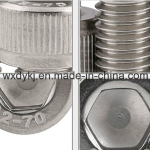 DIN 912 Stainless Steel Socket Head Cap Machine Screw pictures & photos