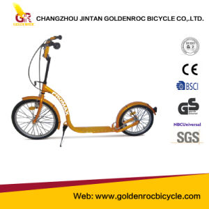 """(GL2016-N) High Quality 20""""-16"""" Kick Scooter with Ce pictures & photos"""