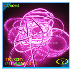 5050SMD RGB LED Neon Flex with 3 Years Warranty pictures & photos