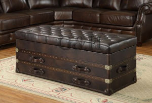 Globe Trekker Aviator Large Coffee Table, Aviator Trunk Coffee Table pictures & photos