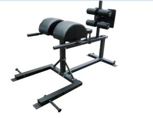 Gym Equipment Glute Ham Developer/Fitness Equipment Bench pictures & photos