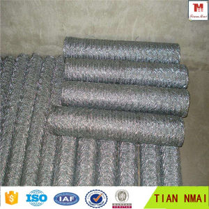 ISO9001 and SGS Chicken Wire Netting / PVC Coated Galvanized Hexagonal Wire Mesh pictures & photos