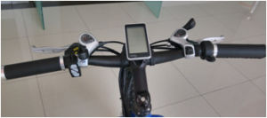 Hot Selling Fat Tire Mountain E-Bike Made in China pictures & photos