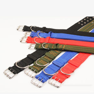Nylon Knitting Pet Collars for Training Large Dogs pictures & photos