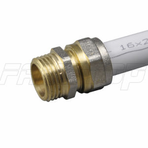 Brass Pex Pipe/Tube Connector with Ce ISO Certificate pictures & photos