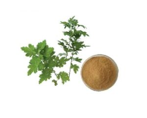 Natural Wormwood Leaf Extract Powder Plant Extract pictures & photos